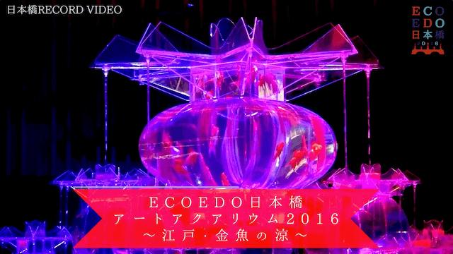 ECOEDO日本橋アートアクアリウム2016